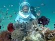 Nha Trang: Dịch Vụ Đi Bộ Dưới Đáy Biển Thu Hút Du Khách
