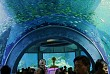 Viện Hải Dương Học Thành Phố Nha Trang - Khánh Hòa
