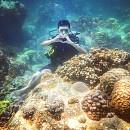 Thử Thách Bản Thân Với Trải Nghiệm Scuba Diving Ở Nha Trang