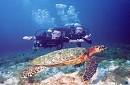 Hành Trình- Vinpearlland - Lặn Biển Nha Trang