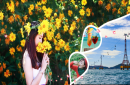 Tour Hồ Chí Minh - Nha Trang - Vinpearl Land DỊP TẾT ÂM LỊCH 2018 - 3 Ngày 2 Đêm
