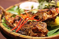 Cá Tắc Kè Nha Trang - Càng Ăn Càng Thấy Ngon