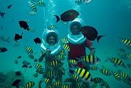 Nha Trang: Hấp dẫn với nhiều trò chơi dưới đáy biển