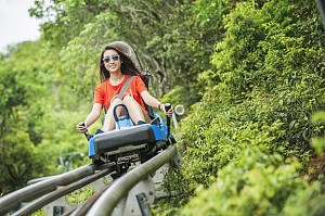 Hành trình một ngày ôm trọn Vinpearl Nha Trang