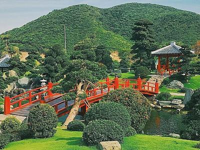 Công viên Nhật Bản phiên bản Nha Trang làm chao đảo giới trẻ