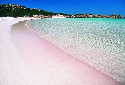 Top 10 Bãi Biển Màu Hồng Tuyệt Vời Nhất Trên Thế Giới