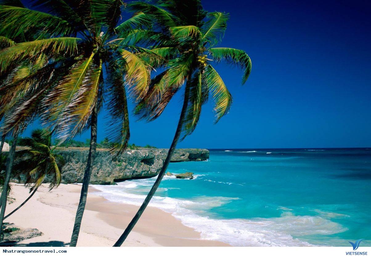 Du lịch Nha Trang thiên đường của cái đẹp