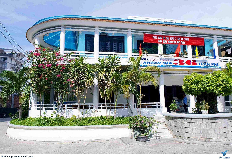 Khách Sạn 36 Trần Phú,khach san 36 tran phu