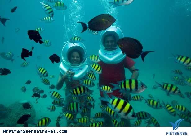 Nha Trang Hấp dẫn với nhiều trò chơi dưới đáy biển